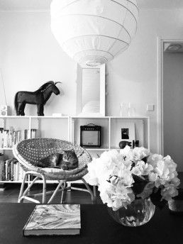 bw picture of an apartment with a wooden ornament horse and mirror on white shelves, a cat on an wicker chair and flowers on a vase